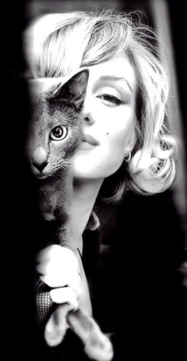 1a18146d34066dfede41d47a231797cc--cat-people-cat-eyes